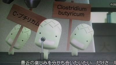 アニメ2ED_C.ブチリカム.JPG